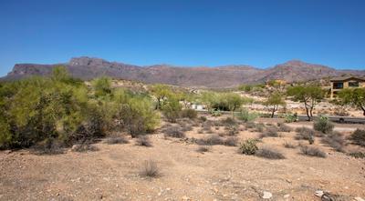 3703 S Avenida De Angeles, Gold Canyon, AZ 85118