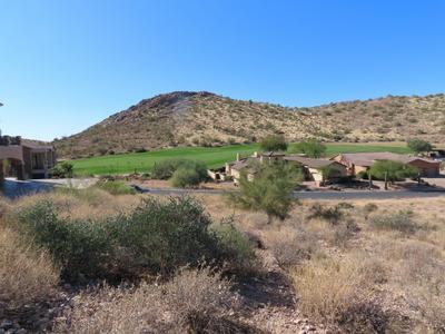 4173 S Camino De Vida, Gold Canyon, AZ 85118