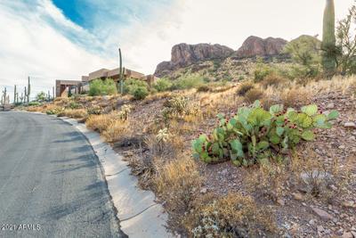 9750 E Treasure Pl, Gold Canyon, AZ 85118