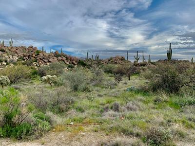 1484 W Tortolita Mountain Cir #294, Oro Valley, AZ 85755