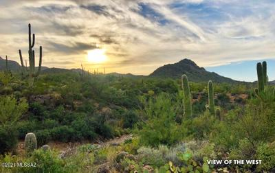 7237 W El Camino Del Cerro, Tucson, AZ 85745