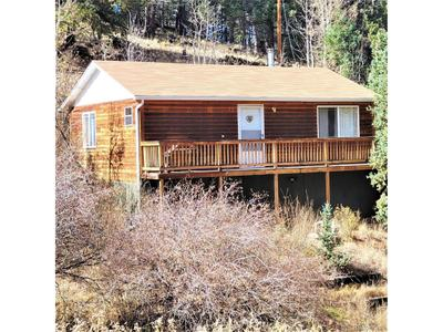 361 Willow Rd, Divide, CO 80814