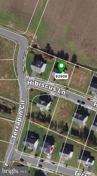 213 Hibiscus Ln, Cambridge, MD 21613