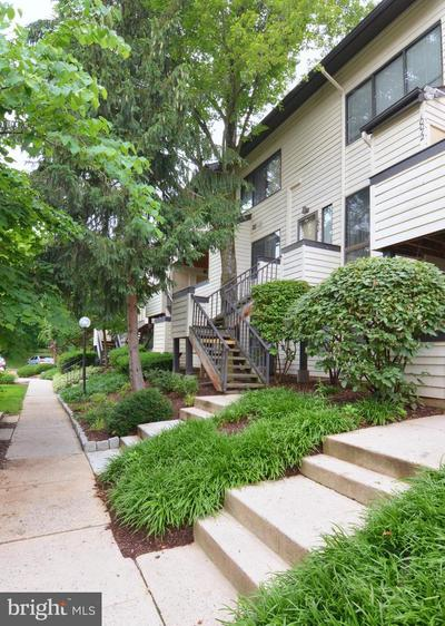 10010 Hellingly Pl #235 Image 36 of 37