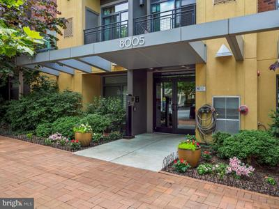 8005 13th St #211, Silver Spring, MD 20910