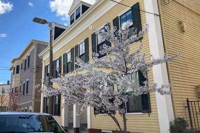 85 Eutaw St #2, Boston, MA 02128