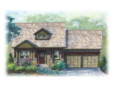 25 Ivestor Gap Rd #1179, Biltmore Lake, NC 28715