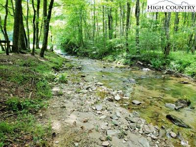 292 Wildcat Ridge Rd Image 4 of 24