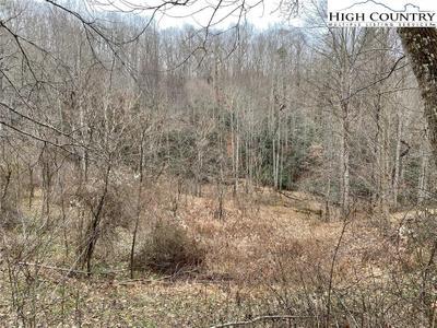 496 Timber Ridge Rd Image 3 of 4
