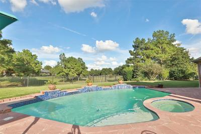 9918 Kershope Forest Ct, Spring, TX 77379