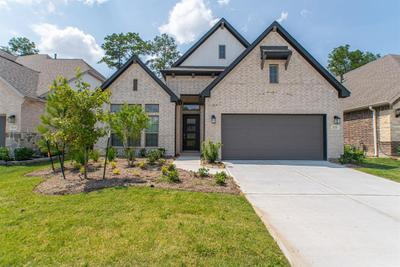28250 Wooded Mist Dr, The Woodlands, TX 77386