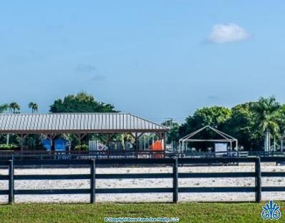 Equestrian Club Estates Homes For Sale Wellington Real